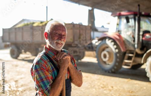 Fototapeta Senior farmer in front of tractor on cattle farm