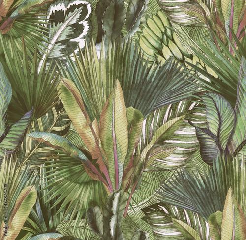 Fototapeta dżungla brudna zieleń retro