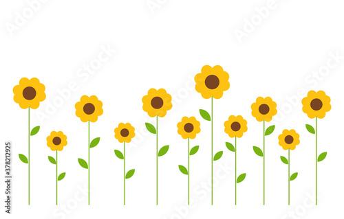 Obraz na płótnie Cute yellow flowers background.