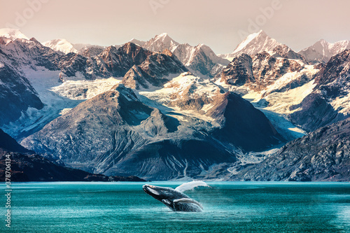 Wallpaper Mural Alaska whale watching boat excursion