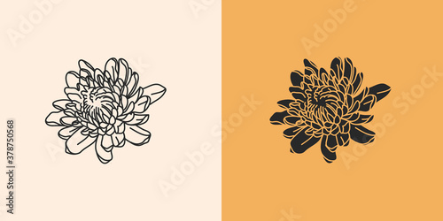 Fotomural Hand drawn vector abstract stock flat graphic illustration with logo elements se