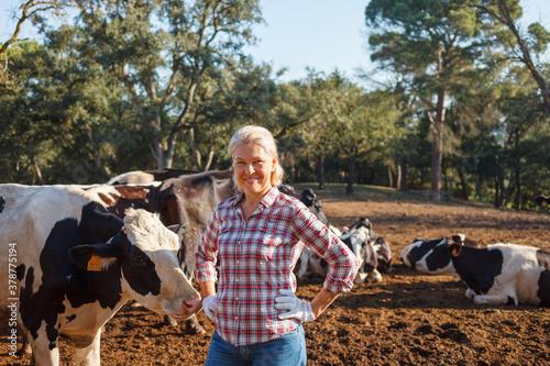 Obraz na płótnie Happy woman farmer with her cows.