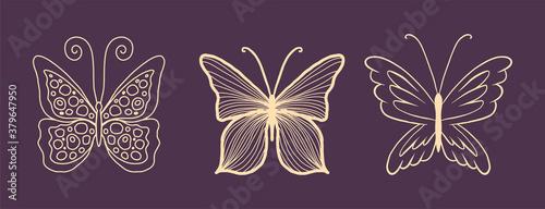 Obraz na plátně Set of gold butterflies for a luxury logo or tattoo