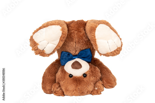 Fotografiet Friendly brown teddy bear with blue bow staying in handstand on white background
