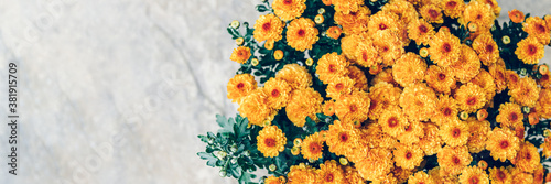 Fotografia A bouquet of orange chrysanthemum flowers in pot with light background and copy
