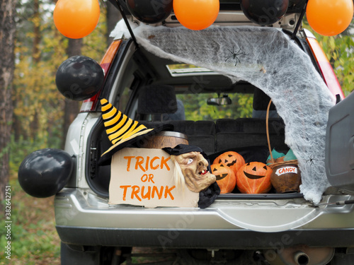 Photo Trick or trunk