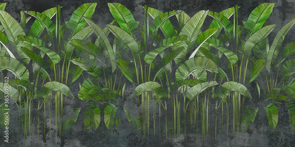 Fototapeta liście bananowca czarny beton