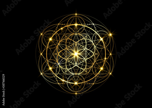 Canvas Print Seed of life symbol Sacred Geometry