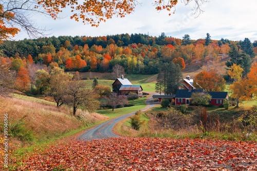 Obraz na plátně Beautiful Fall colors farm house