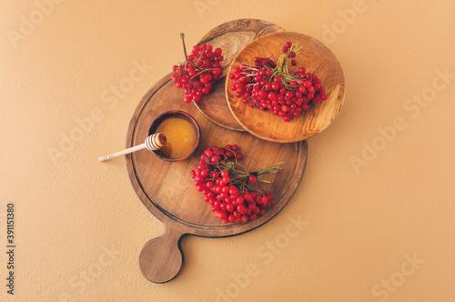Obraz na plátně Board with fresh viburnum berries and honey on color background
