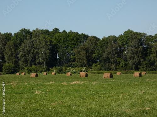 Rural landscape with haystacks on green field, Pomeranian Province, Poland Fototapet