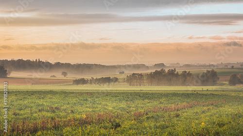 Photo Bois & champs dans la brume sur le plateau d'Auvers sur Oise