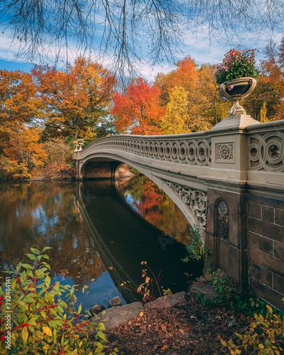 Obraz na płótnie The Bow Bridge with autumn color, in Central Park, Manhattan, New York City