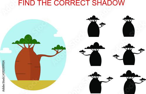 Carta da parati An illustration of a baobab tree