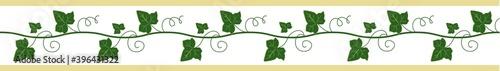 Fotografie, Obraz Elegant seamless border, ivy ribbon for decor