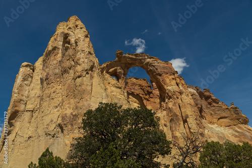 Fotografiet Grosvenor Arch at Grand Staircase-Escalante National Monument, Utah, USA