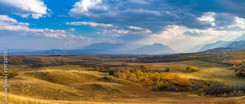 Fotografie, Obraz Vast prairie and forest in beautiful autumn