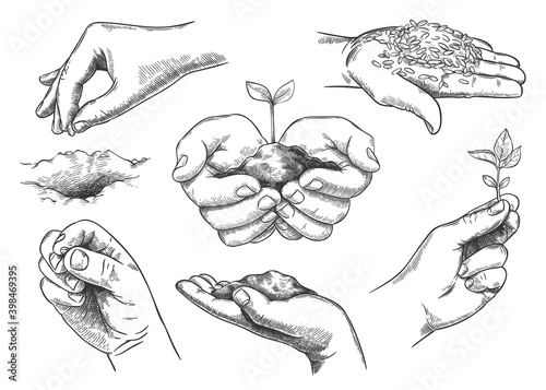 Wallpaper Mural Hands with plant sprout
