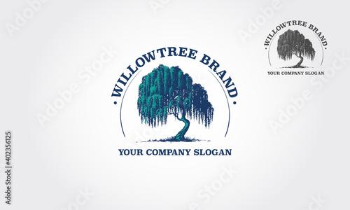 Fotografija Willow Tree Vector Logo Template