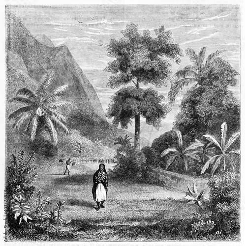 Fotografie, Obraz tahitian woman traditional dressed surrounded by luxuriant nature of Tahiti inland