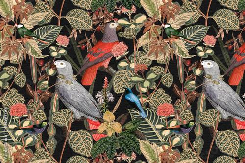 Wallpaper Mural Bird pattern background jungle illustration