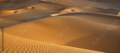 Billede på lærred Sand Dunes In Desert