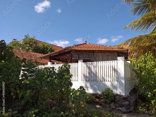 Wallpaper Mural Caribbean colonial house surrounded by lush vegetation
