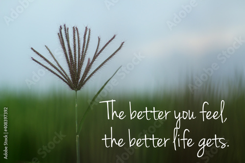 Fotomural Inspirational motivational quote - The better you feel, the better life gets