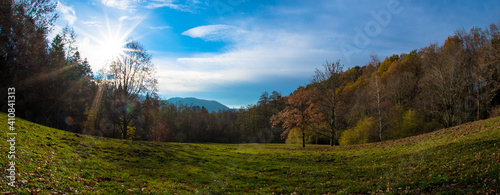 Photo Scenic View Of Trees And Mountains Against Sky
