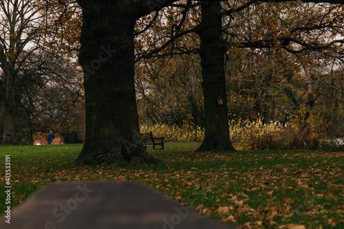 Obraz na płótnie Park Markeaton Derby