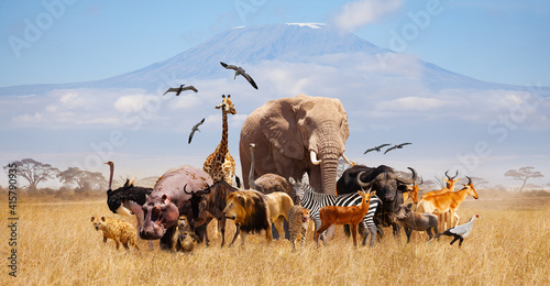 Group of many African animals giraffe, lion, elephant, monkey and others stand together in with Kilimanjaro mountain on background
