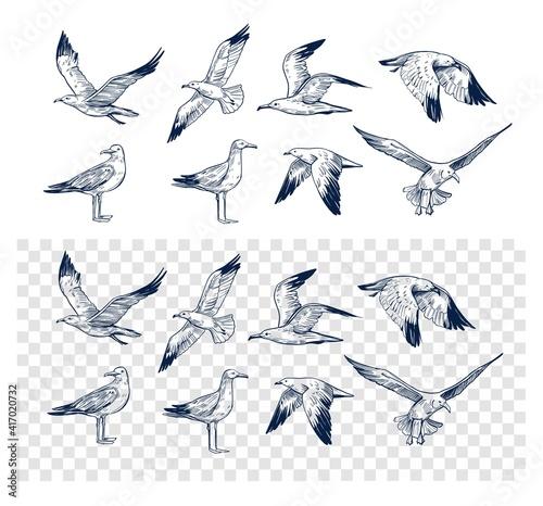 Wallpaper Mural Set of seagulls outlines