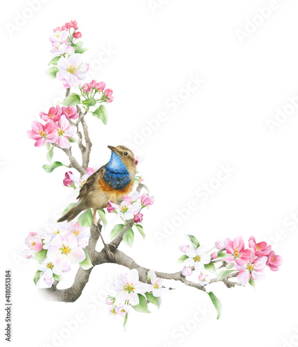 Obraz na plátne Blooming apple branch and a bird hand drawn in watercolor isolated on a white background