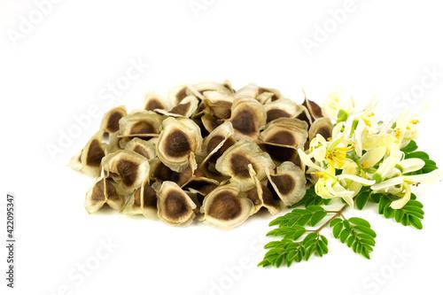 Pile of Moringa seed and moringa flower with leaf isolated on white background Fototapeta