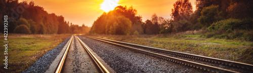 Fotografie, Obraz Railway track in the evening in sunset
