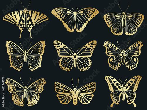 Golden butterflies Fototapeta