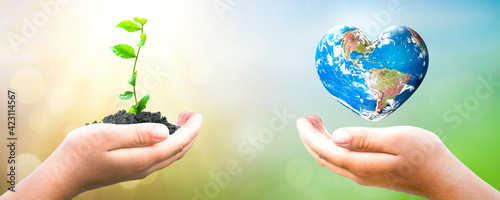 Photo Earth Day concept: hand holding  plant and earth on blur green nature background