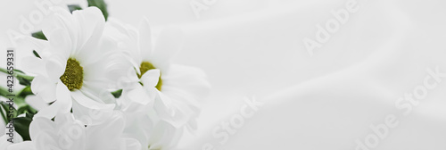 Valokuvatapetti White daisy flowers on silk fabric as bridal flatlay background, wedding invitat