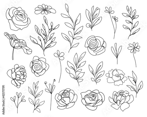 Valokuva Continuous Line Drawing Set Of Flowers, Leaves, Plants Black Sketch Isolated on White Background