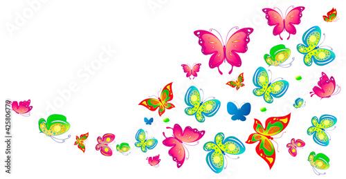 butterfly782