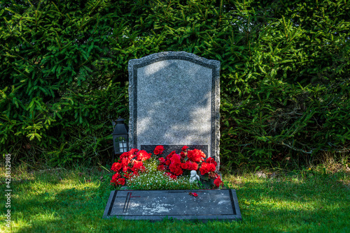 Canvas-taulu Single gray gravestone decorated with red flowers