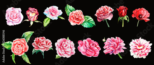 Foto watercolor set of flowers isolated, peony, camelia, rose, poppy