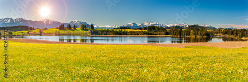 Fotografia beautiful rural landscape in Bavaria with mountain range and meadow at springtim