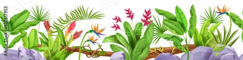 Fotografia, Obraz Jungle seamless border, vector tropical leaf frame background, plants, rainforest flowers, banana, stone