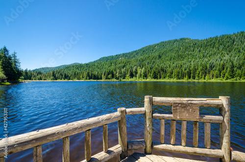 Fotografija Fragment of Trillium Lake Oregon, USA.