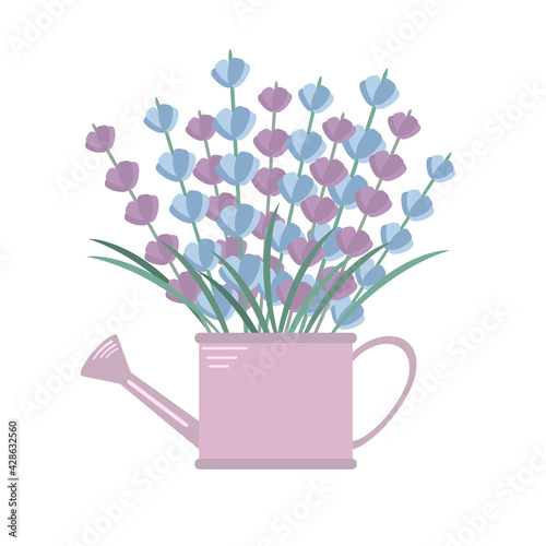 Photo vector illustration of lavender flowers in a watering can