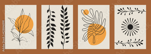 Photo Abstract minimalist plant backgrounds