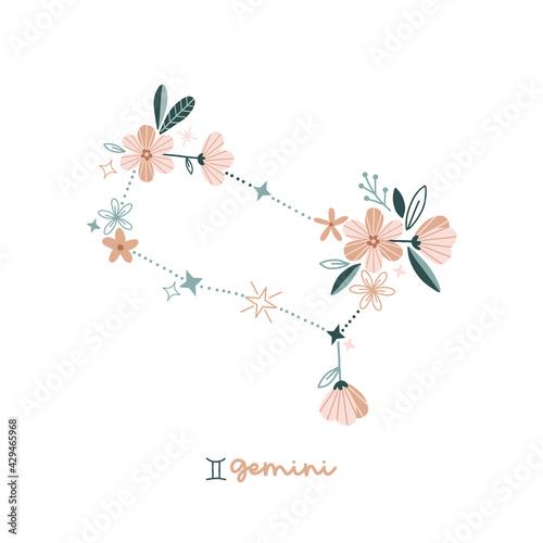 Fotografie, Obraz Flower Gemini zodiac sign clip art isolated on white