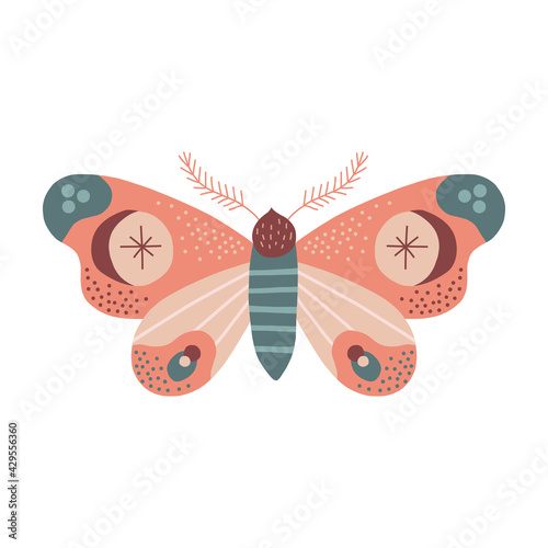 Photo Whimsical moon moth vector illustration isolated on white