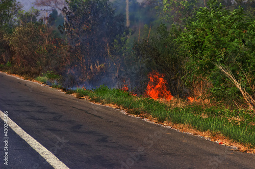 The highway prevents the spread of a forest fire because the wind blows from the Fototapet